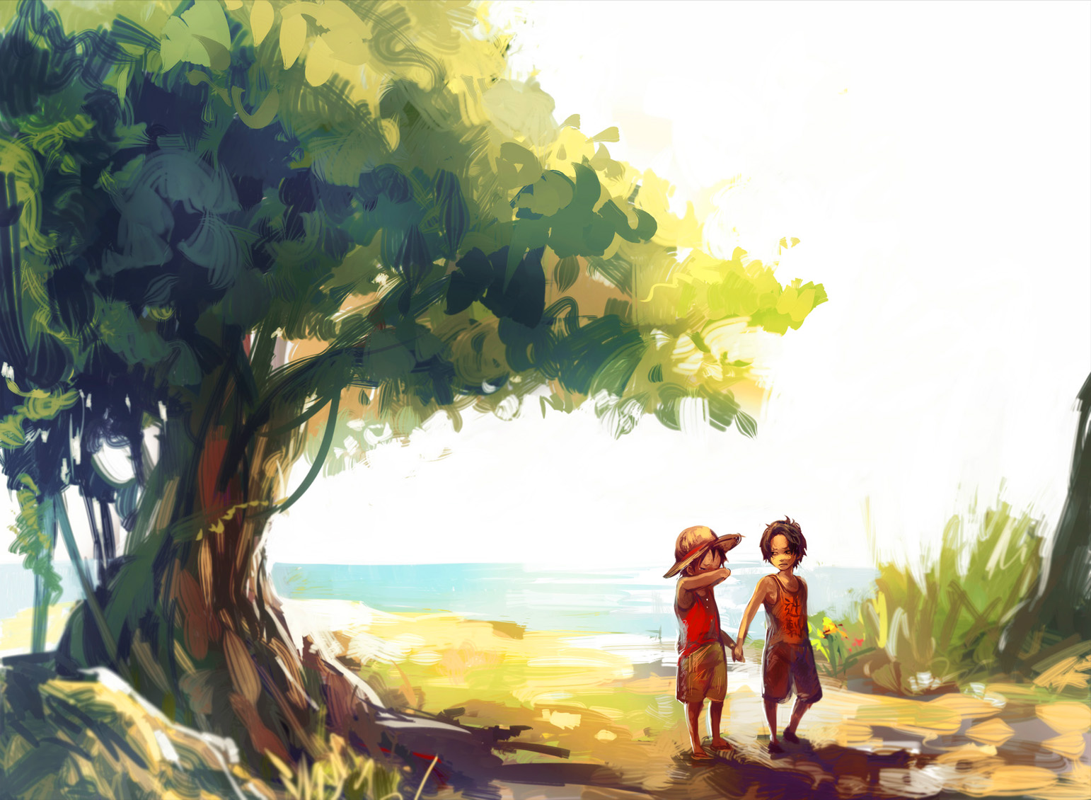 luffy-and-ace-wallpapers-full-hd.jpg